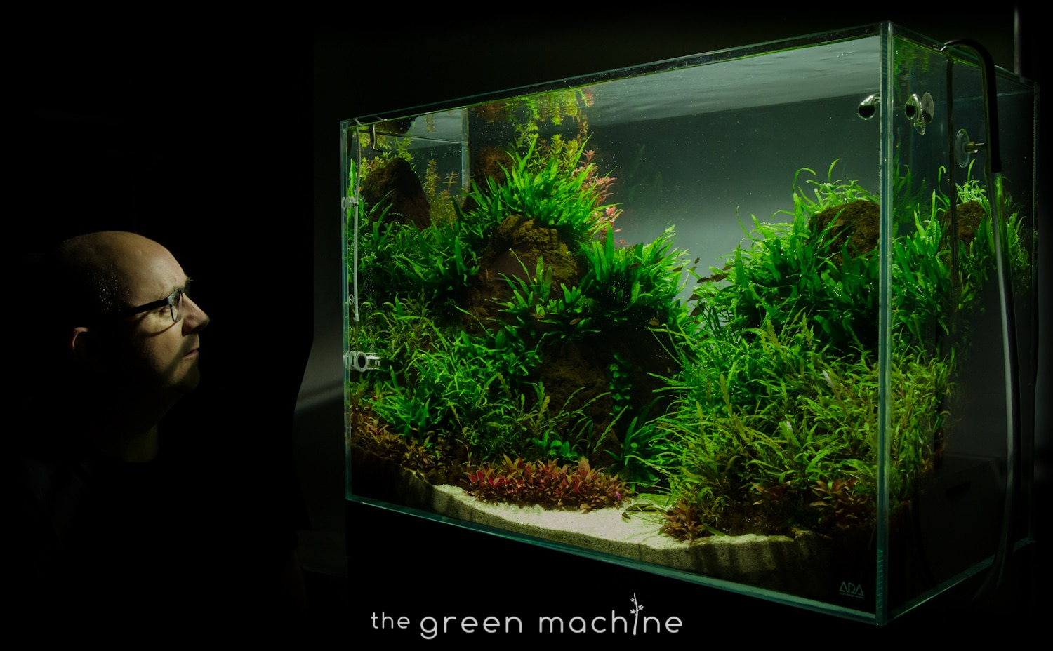 Alude Aquascape By James Findley