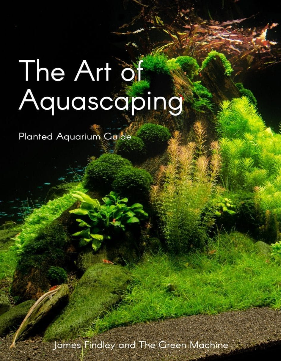 The Art of Aquascaping Book by James Findley – Planted ...